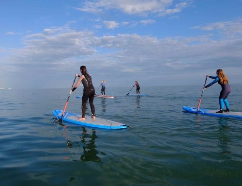 How to Stand Up Paddle Board